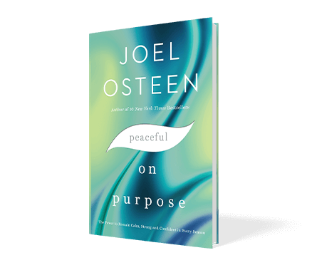 Peaceful On Purpose Book