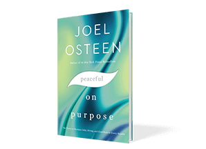 Peaceful On Purpose Book