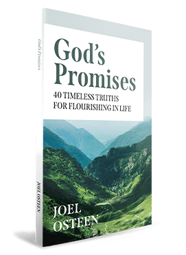 GOD'S PROMISES: 40 TIMELESS TRUTHS FOR FLOURISHING IN LIFE Devotional