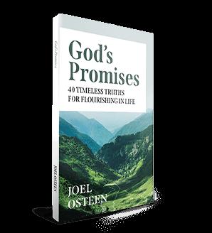 GOD'S PROMISES: 40 TIMELESS TRUTHS FOR FLOURISHING IN LIFE Devotional