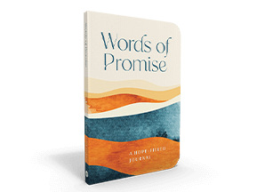 Words Of Promise Journal
