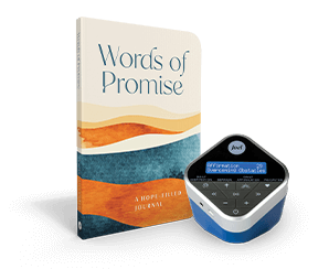 Words Of Promise Journal and Inspiration Cube